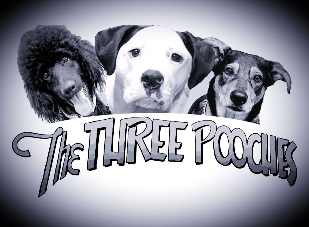 The Three Pooches